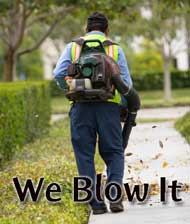 we-blow-it.jpg